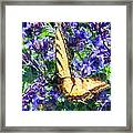 Butterfly With Purple Flowers 3 Framed Print