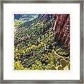 Cacti View Of Zion Framed Print