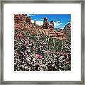 Cactus Flowers And Red Rocks Framed Print