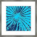Cactus - Reunion Island-indian Ocean Framed Print