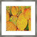 Cactus With Sunset Glow Framed Print