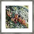 California Seaside Garden Framed Print