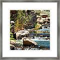 Calming Waters Framed Print