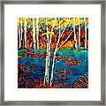Canadian  Landscape Artist Carole Spandau Framed Print