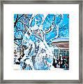 Canadian Polar Bear Framed Print