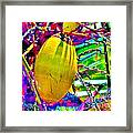 Candied Coconut Framed Print