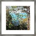 Canopy Vista Framed Print