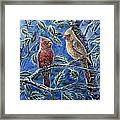 Cardinals And Holly Framed Print