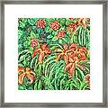 Cascading Day Lilies Framed Print