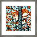 Orange Cat In Tree Autumn Fall Colors Framed Print