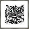 Cat Iwan Framed Print
