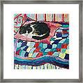 Cat On Pink  Framed Print
