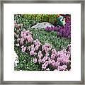 Catterpillar Large Flower Garden Vegas Framed Print