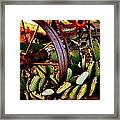 Caught In A Cactus Patch-sold Framed Print