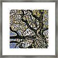 Cemetery Oak Framed Print