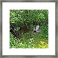 Chairs By The Creek In Summer Framed Print