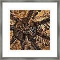 Chandelier Made Of Bones And Skulls. Framed Print