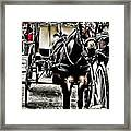 Characteristics Of New Orleans  V3 Framed Print