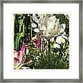 Chartres Garden White Framed Print
