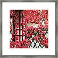 Chateau Chenonceau Vines On Wall Image Three Framed Print
