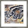 Chauvet Cave Auroch And Horses Framed Print