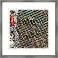 Checkered Past Framed Print
