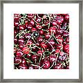 Cherries In Des Moines Washington Framed Print