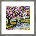 Cherry Blossom Tree Walk In The Park Framed Print