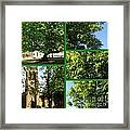 Chestnut Trees At Christchurch Framed Print