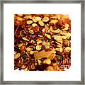 Chili Pepper Flakes Framed Print