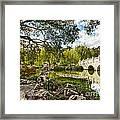 Chinese Garden Bridge Framed Print