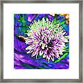 Chive Framed Print by Jo Ann
