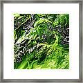 Chlorophylle Framed Print