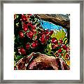Chocolate Raspberry Fields Framed Print by Molly Poole