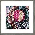 Christmas Baubles Framed Print by Debra Piro