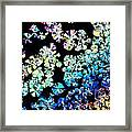 Citric Acid Microcrystal Colorful Abstract Art Framed Print