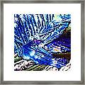 Citric Acid Microcrystals Abstract Color Art Framed Print