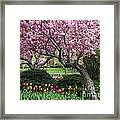 City Blossoms Framed Print