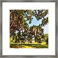 Classic Southern Beauty 2 Framed Print