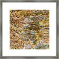 Clean Stream 1 - Featured 2 Framed Print by Alexander Senin