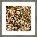 Clean Stream 2 - Featured 3 Framed Print by Alexander Senin