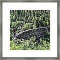 Cloudcroft Railroad Trestle Framed Print