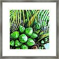 Coconut Tree   Sold Framed Print