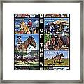 Code Of The West Framed Print