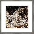 Coffee Bubbles 3 Framed Print