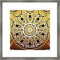 Coffee Flowers 5 Calypso Ornate Medallion Framed Print