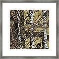 Cold Birds Framed Print