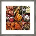 Collage - Pumpkins - Gourds - Elena Yakubovich Framed Print