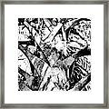 Collier-seminole Sp 17 Framed Print