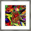 Color Star Framed Print